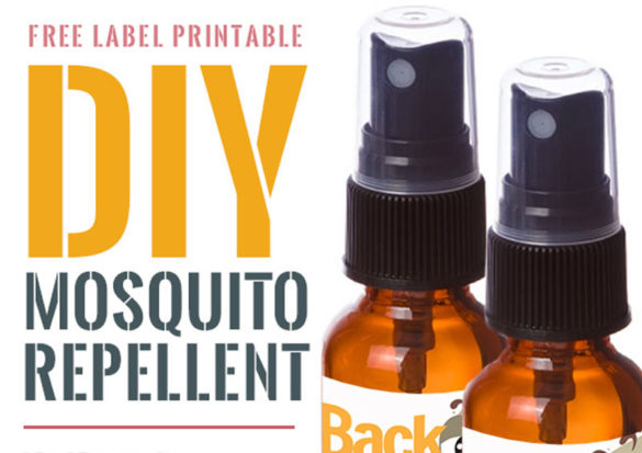 Now, whenever he heads out the door, I douse (well, lightly spray) him with this homemade non-toxic mosquito repellent. So far, so good. No more bites.