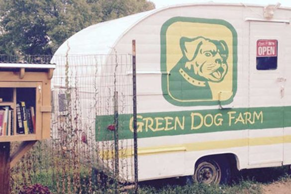 The best adventures often are discovering hidden treasures in your own backyard. We were in for a real treat when we stumbled upon the Green Dog Farm community supported agriculture (CSA) trailer.