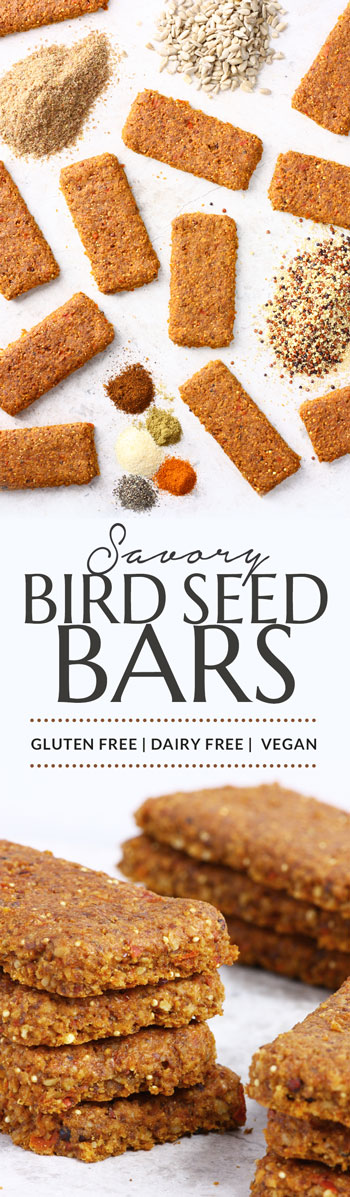 savory-bird-seed-bars-pinterest
